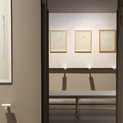 """Progetto allestimento """"Giosetta Fioroni. Viaggio Sentimentale"""" Museo del 900"""